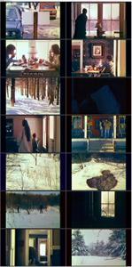 The Animal (1976)