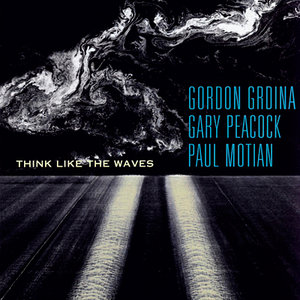 Gordon Grdina, Paul Motian, Gary Peacock - Think Like The Waves (2006) [Official Digital Download 24/88]