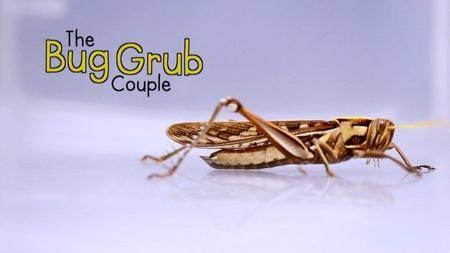 BBC - The Bug Grub Couple (2017)