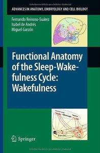 Functional Anatomy of the Sleep-Wakefulness Cycle (Repost)