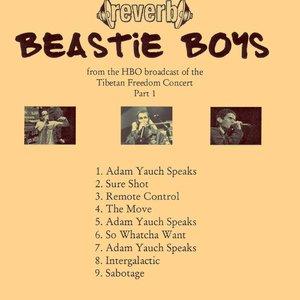 Beastie Boys - Reverb (Tibetan Freedom Concert) (1999) **[RE-UP]**