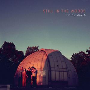 Still in the Woods - Flying Waves (2019) [Official Digital Download 24/96]