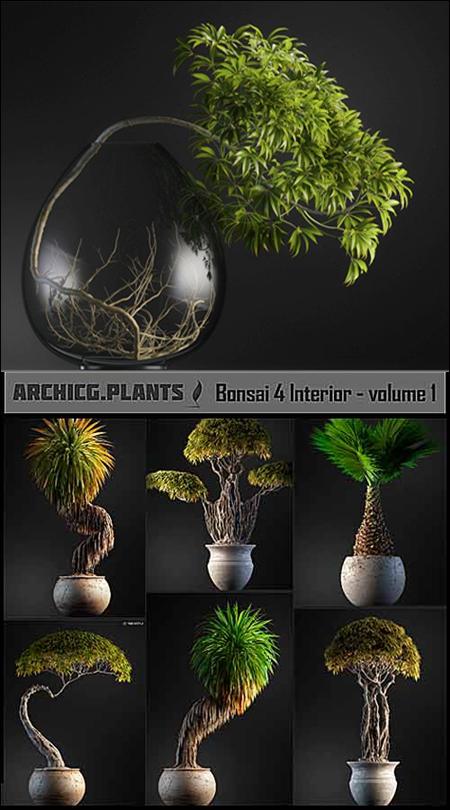 ArchiCG-Plants: Bonsai 4 Interior Volume 1