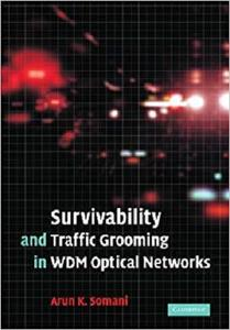 Survivability and Traffic Grooming in WDM Optical Networks [Repost]