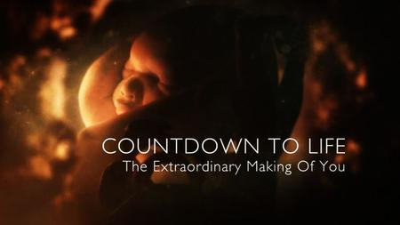 BBC - Countdown to Life: The Extraordinary Making of You (2015)