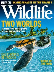 BBC Wildlife - October 2021