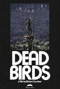 Dead Birds (1963)