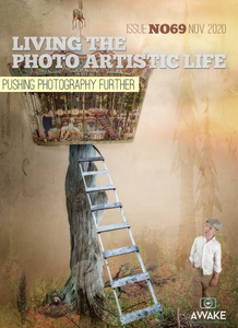 Living The Photo Artistic Life - November 2020