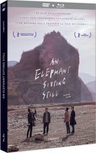 An Elephant Sitting Still (2018) Da xiang xi di er zuo