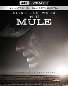 The Mule (2018) [4K, Ultra HD]