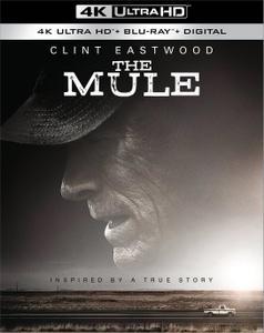 The Mule (2018) [4K, Ultra HD]