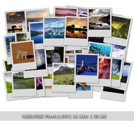 Wallpaper Cool Pack