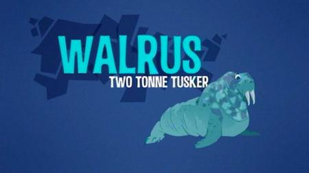 BBC Natural World - Walrus: Two Tonne Tusker (2014)