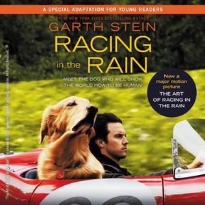 «Racing in the Rain» by Garth Stein