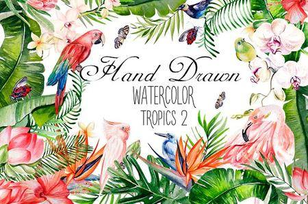 CreativeMarket - Hand Drawn watercolor TROPICS 2