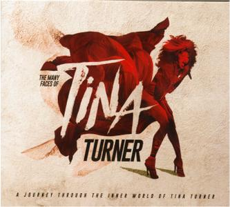 VA - The Many Faces Of Tina Turner (3CD, 2018)