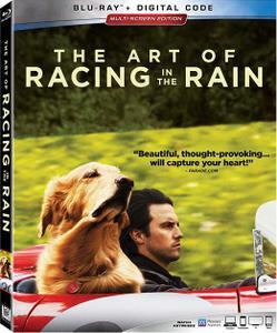 The Art of Racing in the Rain (2019)