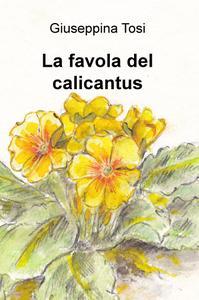 La favola del calicantus