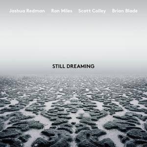 Joshua Redman - Still Dreaming (feat. Ron Miles, Scott Colley & Brian Blade) (2018) [Official Digital Download 24/96]