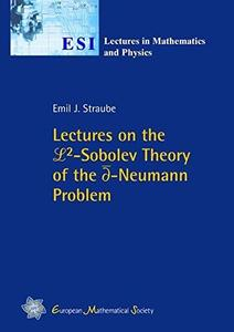 Lectures on the L2-Sobolev Theory of the d-Neumann problem