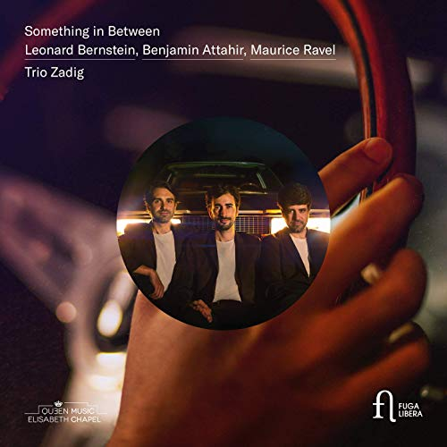 Trio Zadig - Something in Between (2019) [Official Digital Download 24/96]