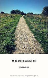Meta-programming in R (Advanced Statistical Programming in R Book 3)