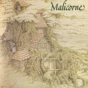 Malicorne - Malicorne 2 (1975) Hexagone/883004 - FR 1st Pressing - LP/FLAC In 24bit/96kHz