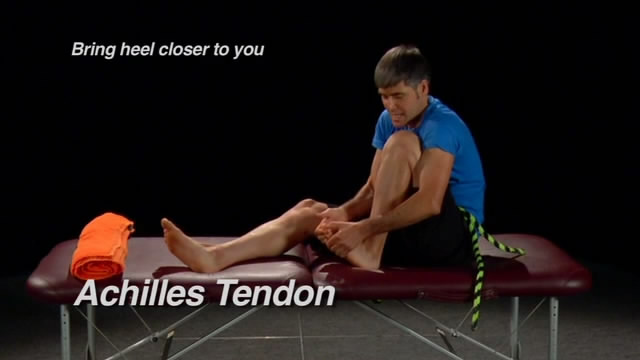 Whartons - Flexibility for Athletes and Everyone