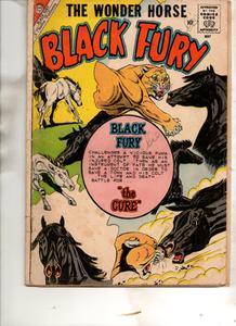 Black Fury 024 (1960) (Charlton) (c2c) (Fc-RAW
