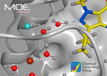 Molecular Operating Environment (MOE) 2019.0102