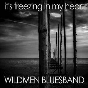 Wildmen Bluesband - It's Freezing in My Heart (2017)
