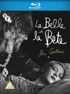 Beauty and the Beast / La belle et la bête (1946)