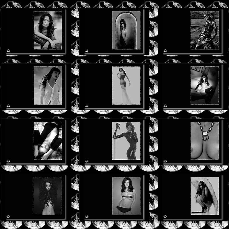 Black & White Beauties 5