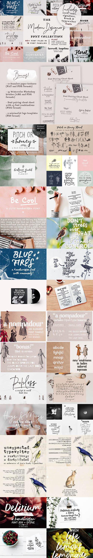 The Modern Designer's Font Collection + 9 Logo PSD Templates