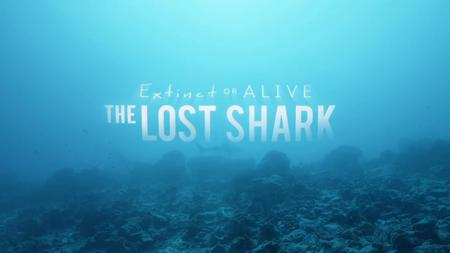 Discovery Channel Shark Week - Extinct or Alive: The Lost Shark (2019)