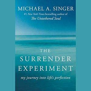The Surrender Experiment: My Journey into Life's Perfection [Audiobook]