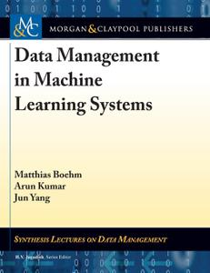 Data Management in Machine Learning Systems