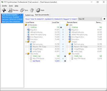FTP Synchronizer Professional 8.0.30.1351 Multilingual