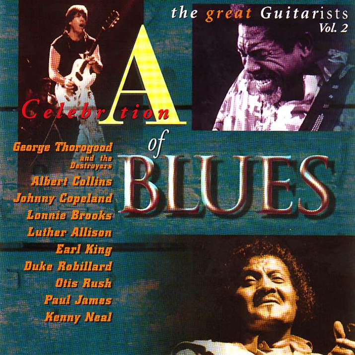 Various Artists - A Celebration of Blues: The Great Guitarists, Vol. II (1996)