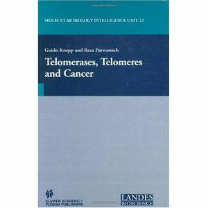 Telomerases, Telomeres and Cancer