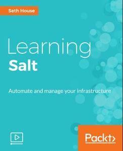 Learning Salt (2017)
