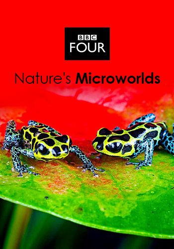 BBC - Nature's Microworlds (2012)