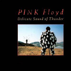 Pink Floyd - Delicate Sound Of Thunder (1988) [UK 2nd Issue] 2CD
