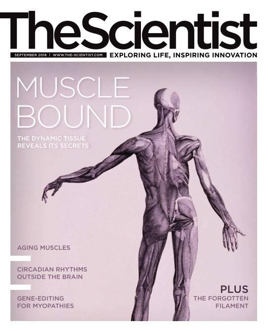 The Scientist - September 2018