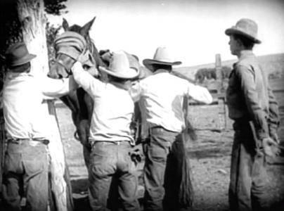 The Stolen Ranch (1926)
