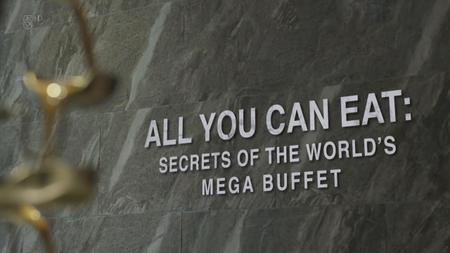 CH5. - All You Can Eat: Secrets of the World's Mega Buffet (2019)