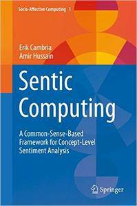 Sentic Computing: A Common-Sense-Based Framework for Concept-Level Sentiment Analysis
