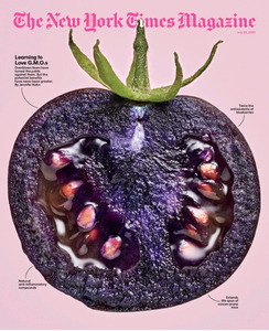 The New York Times Magazine – 25 July 2021