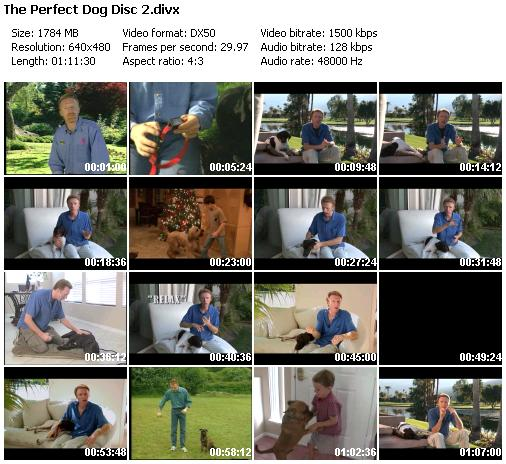 Don Sullivan's - Secrets to Training the Perfect Dog [Disc 1 - 2]