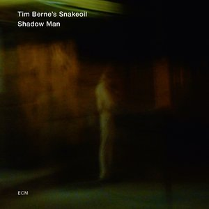 Tim Berne's Snakeoil - Shadow Man (2013) [Official Digital Download 24/88]